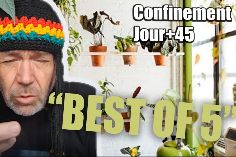 BESTOF #confinement : Les vidéos drôles du confinement ! Jour+44
