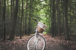 #Toulouse #casting femmes, hommes et enfants ayant des vélos électriques pour tournage publicité