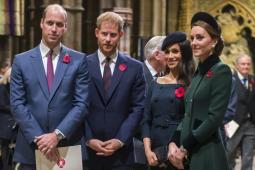 #casting femmes, hommes et enfants pour tournage documentaire sur la famille royale britannique