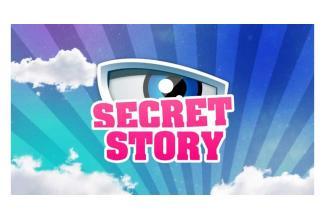 #Casting #Telerealite #SecretStory nouvelle saison #Telerealite