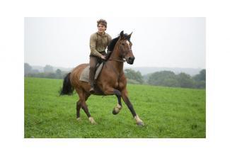 #Paca #figuration homme 30/55 ans #cavalier pour le prochain film de Paul Verhoeven