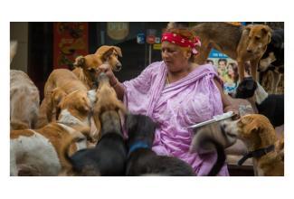 #figuration femme #senior 70+ avec son #chien pour série avec Agathe Bonitzer #Paris