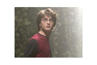#figuration jeune homme 16/28 ans ressemblant à #HarryPotter pour émission M6
